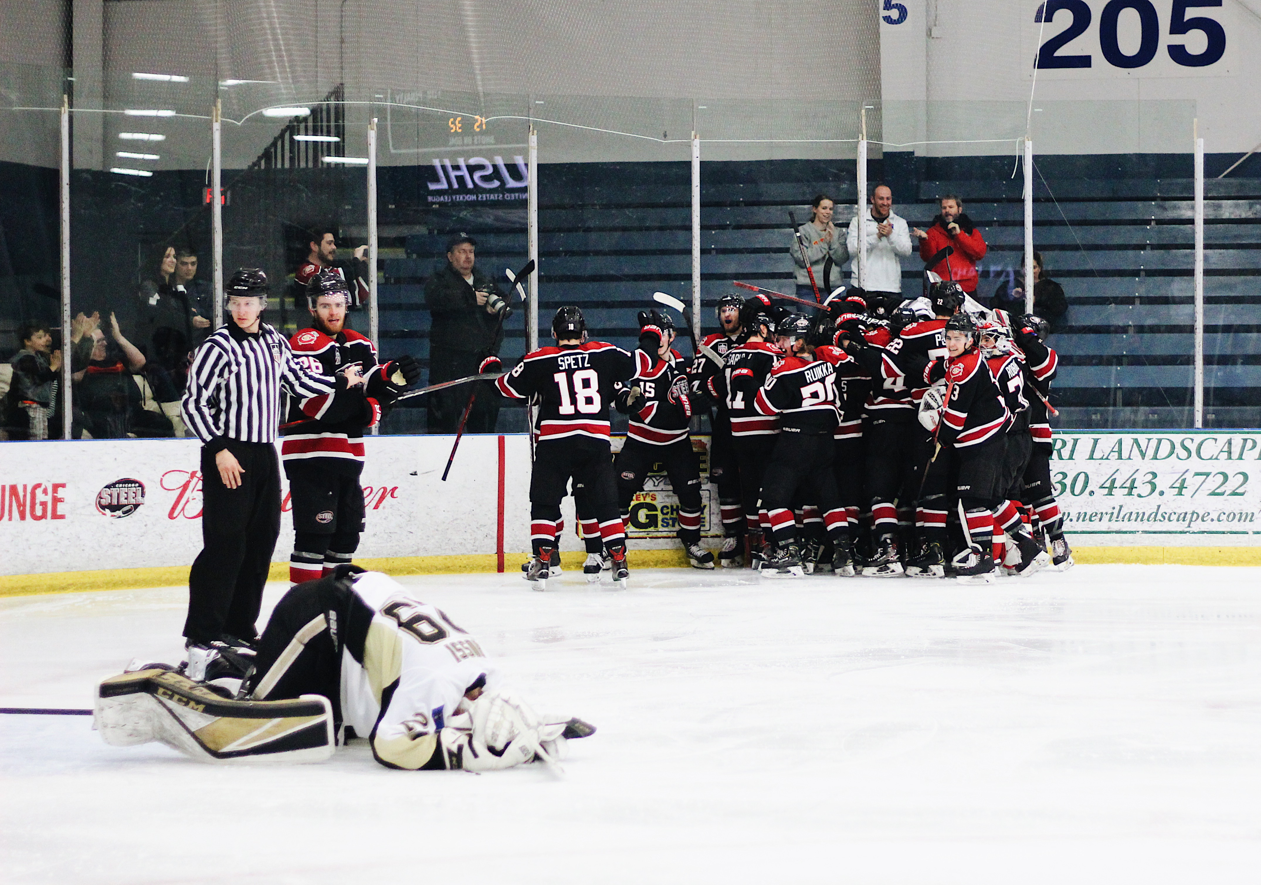 Three Wins From the Clark Cup: Chicago Steel Advance to Finals